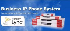OFFER NOW 30eXT SYSTEM WITH 5 IP PHONES FOR ONLY 250 OMR.